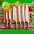 Wholesale cool knife block set carbon suppliers for cook