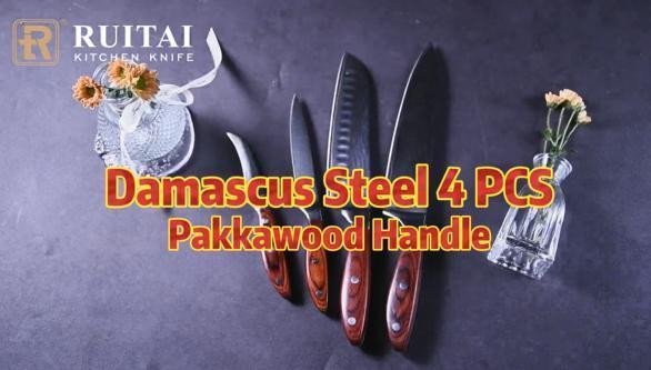 RUITAI Damascus Steel Knife of 4 PCS with Pakkawood Handle Kitchen Chef Knife Family